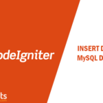 How to insert data into database in CodeIgniter – [Example]
